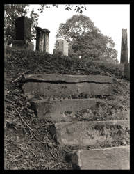 Stairway in the cemetery by tragica1