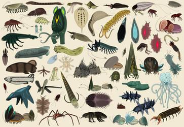 Diyu Fauna Compilation