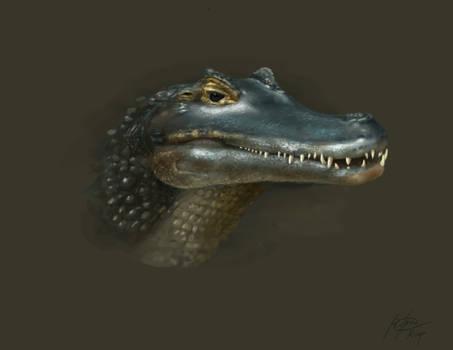 Crocodilian -Unfinished-