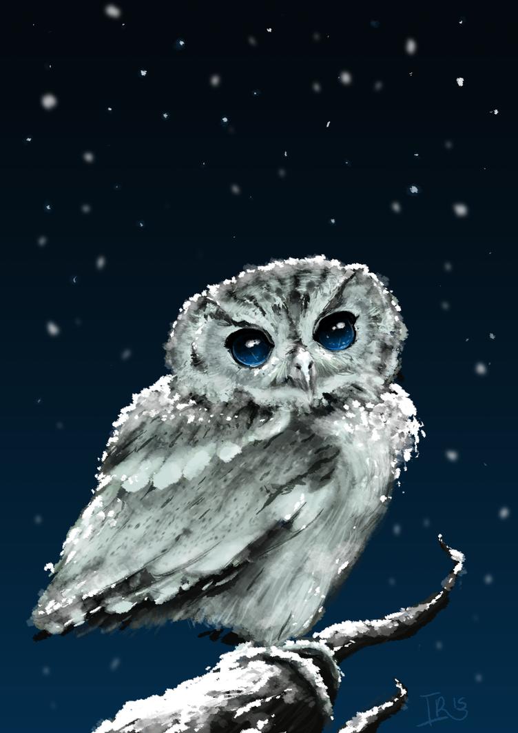 Galaxy owl by Lap12