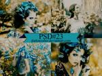 PSD23