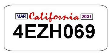 My License Plate by Heidi