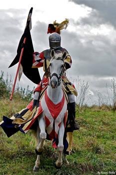 The Knight - Stock