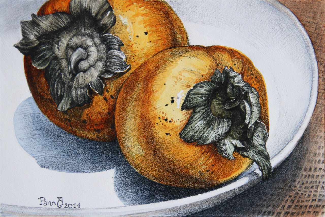 Persimmon by vasoiko