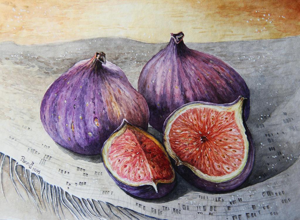 Fig by vasoiko