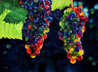 Sunny grapes by vasoiko