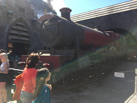 Hogwarts Castle Replica