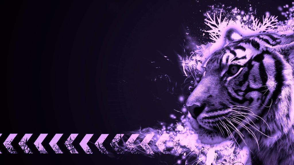 Cool Purple Tiger Wallpaper By I Am Wildcat