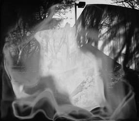 Garden of Ghosts
