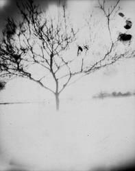 pin tree 2