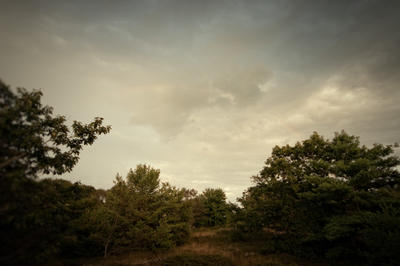 New England Memories by diana-pinhole