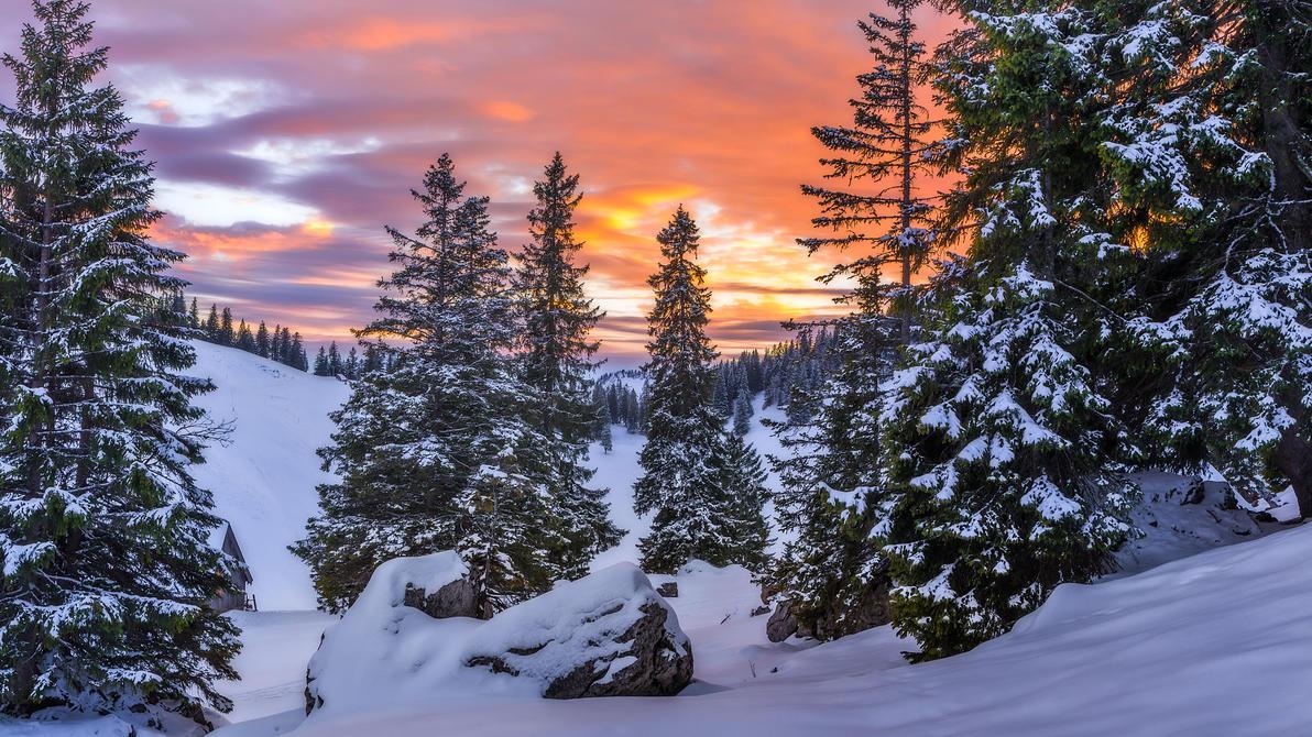 Winterwonderland by StefanPrech