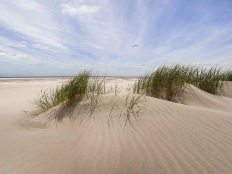 North Sea Germany Amrum the sound of Silence