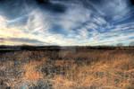 Burnt Prairie