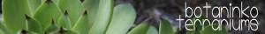 botaninko's Profile Picture