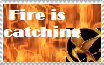 Hunger Games Stamp by paintedbluerose