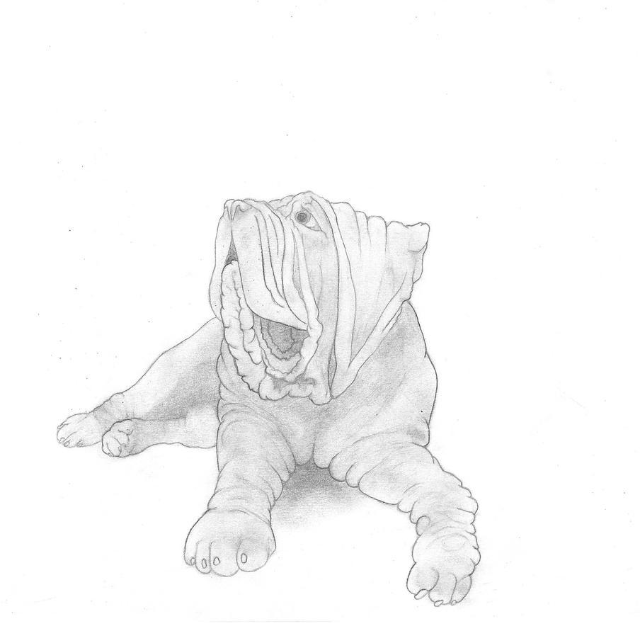 Neopolitan Mastiff by josholeus