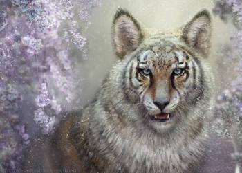 Wisekind Wolftiger by BJPentecost