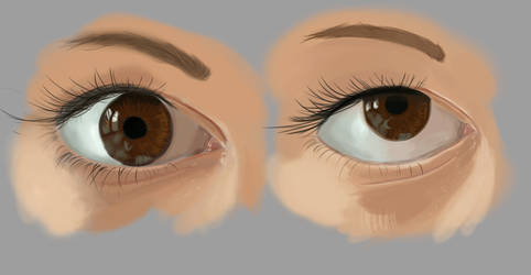 Realistic Eyes Exercices by Syddarta