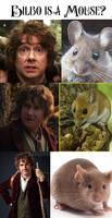 Bilbo is...
