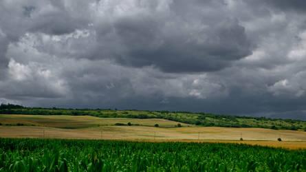 Fields by fildasx
