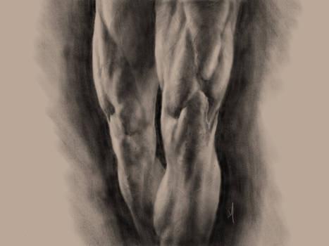 Legs Study in Procreate