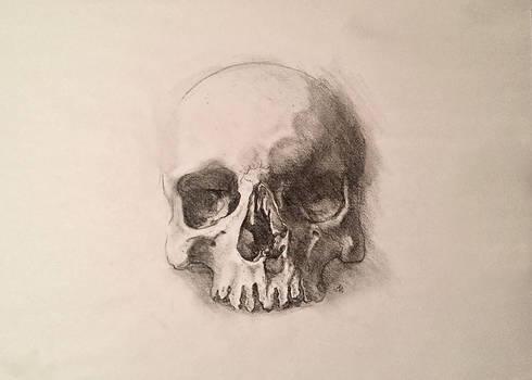 Traditional Skull Drawing