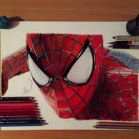 Spider-Man by Steve-Nice