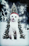 Xmas Calendar Dec 2012 by sofia210
