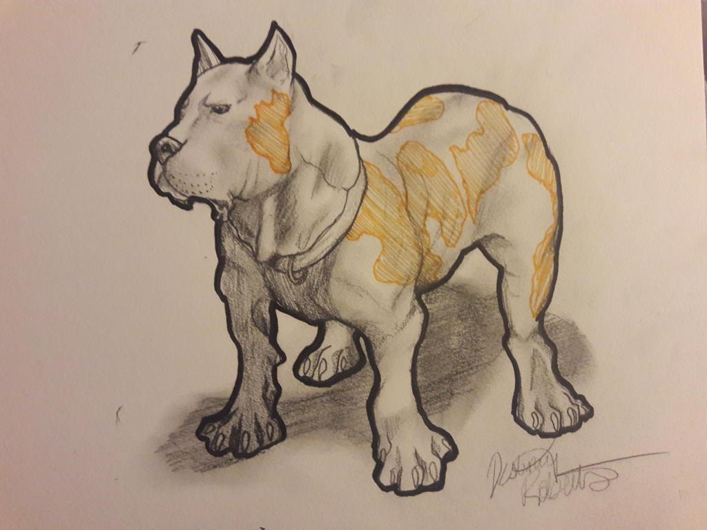 Pitty bully by Destineyishere