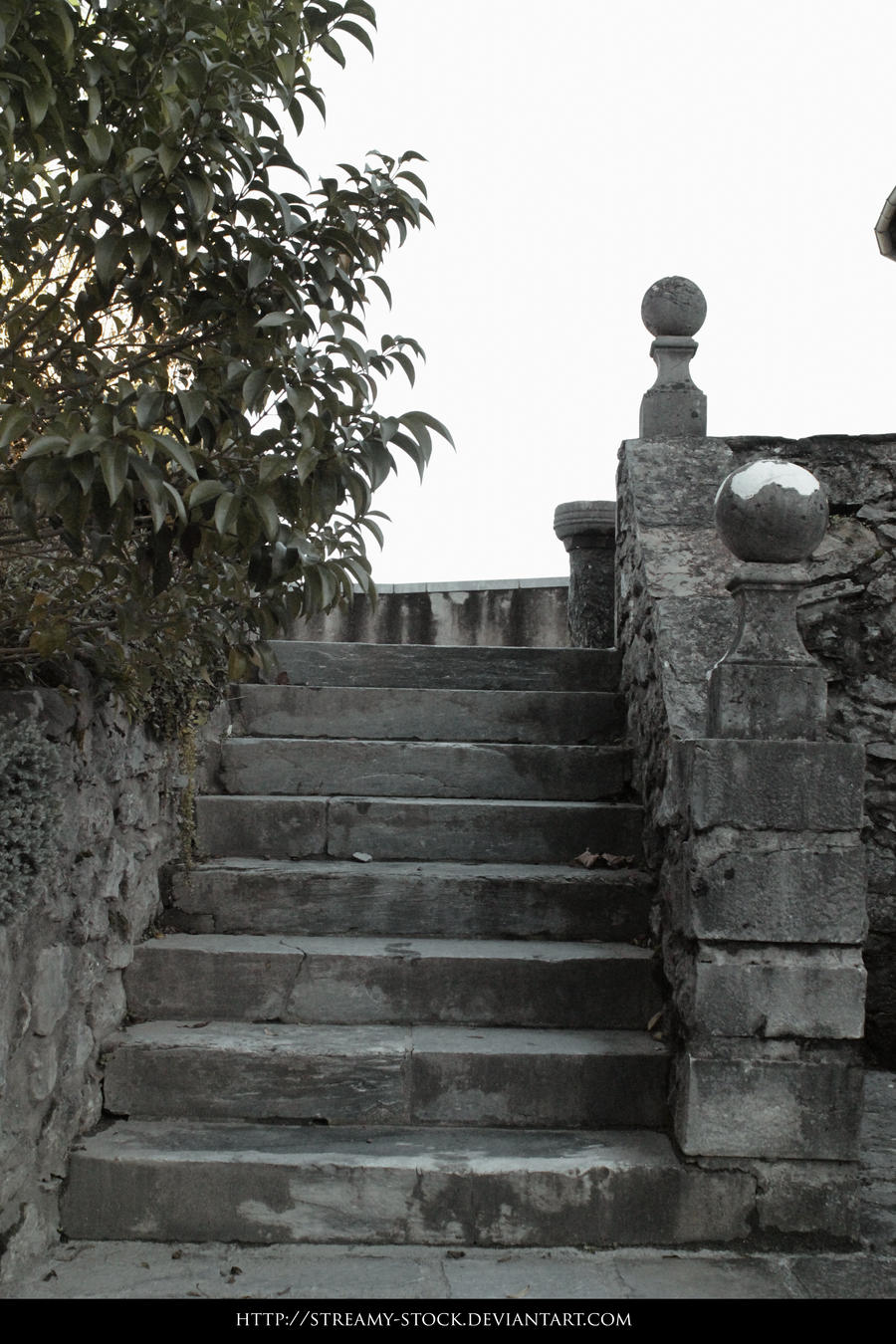 Castle - Stock Streamy