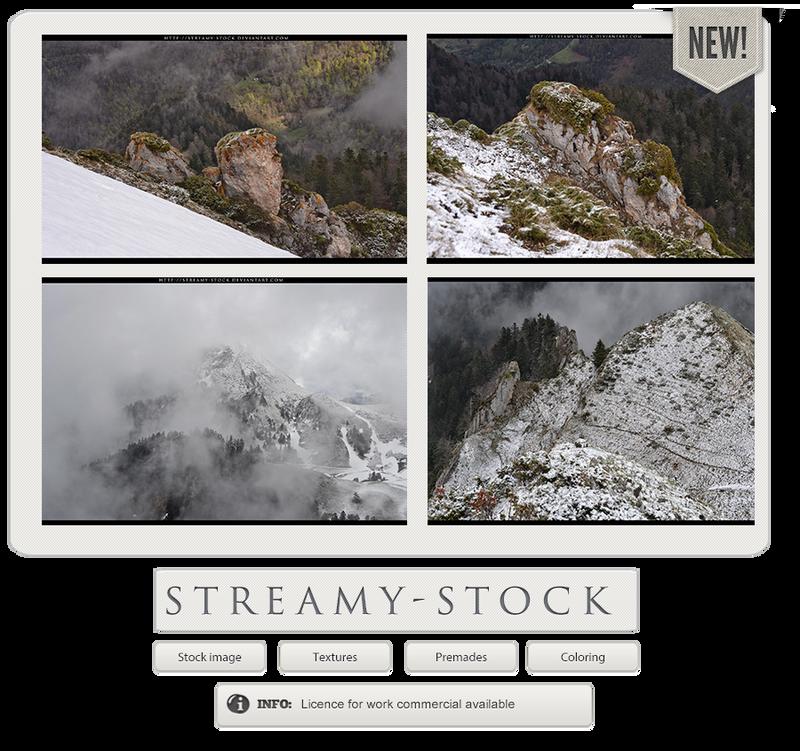 streamy-stock's Profile Picture