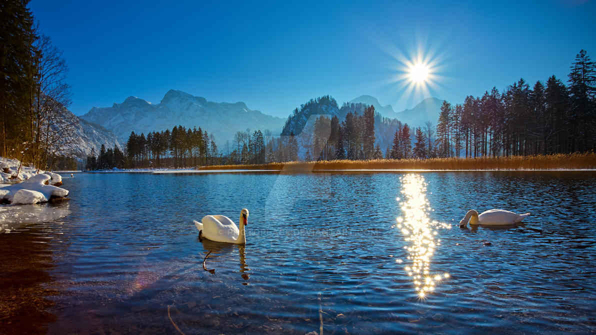 Sunny Winter Day by photoplace