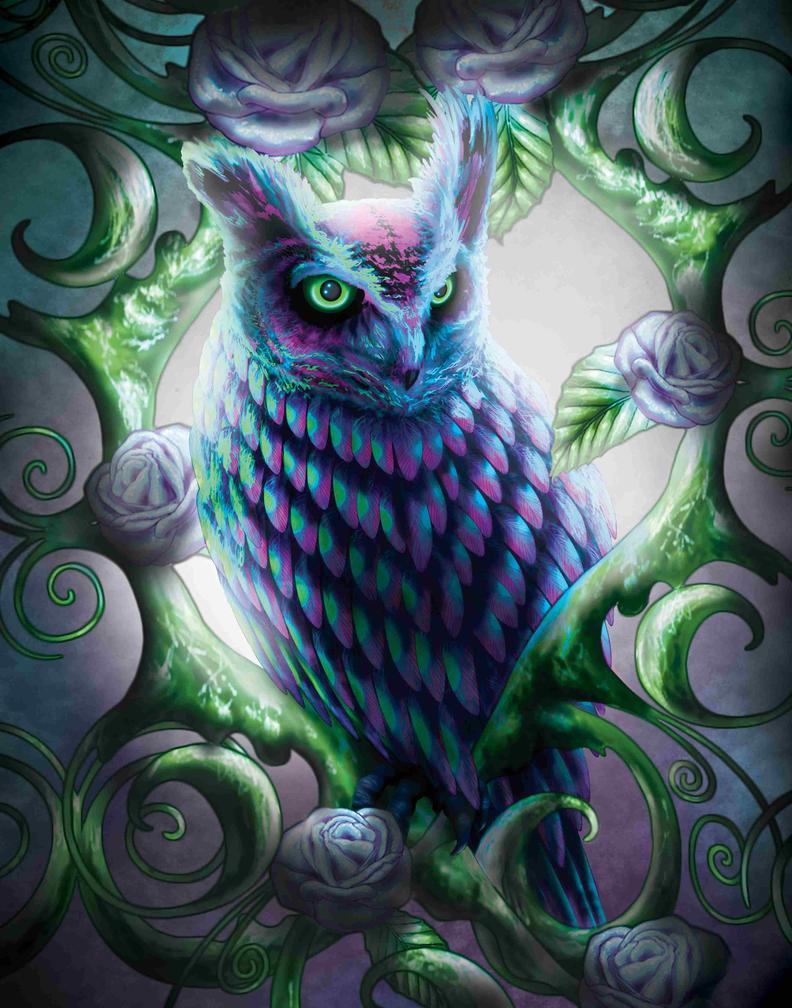 Cool owl drawings - photo#11