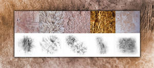 Texture+Brushes: Grunge