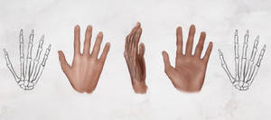 AS Drawing the Hands