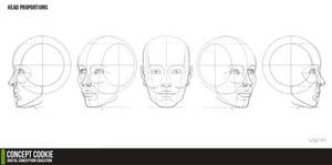 Head Proportions Reference Resource
