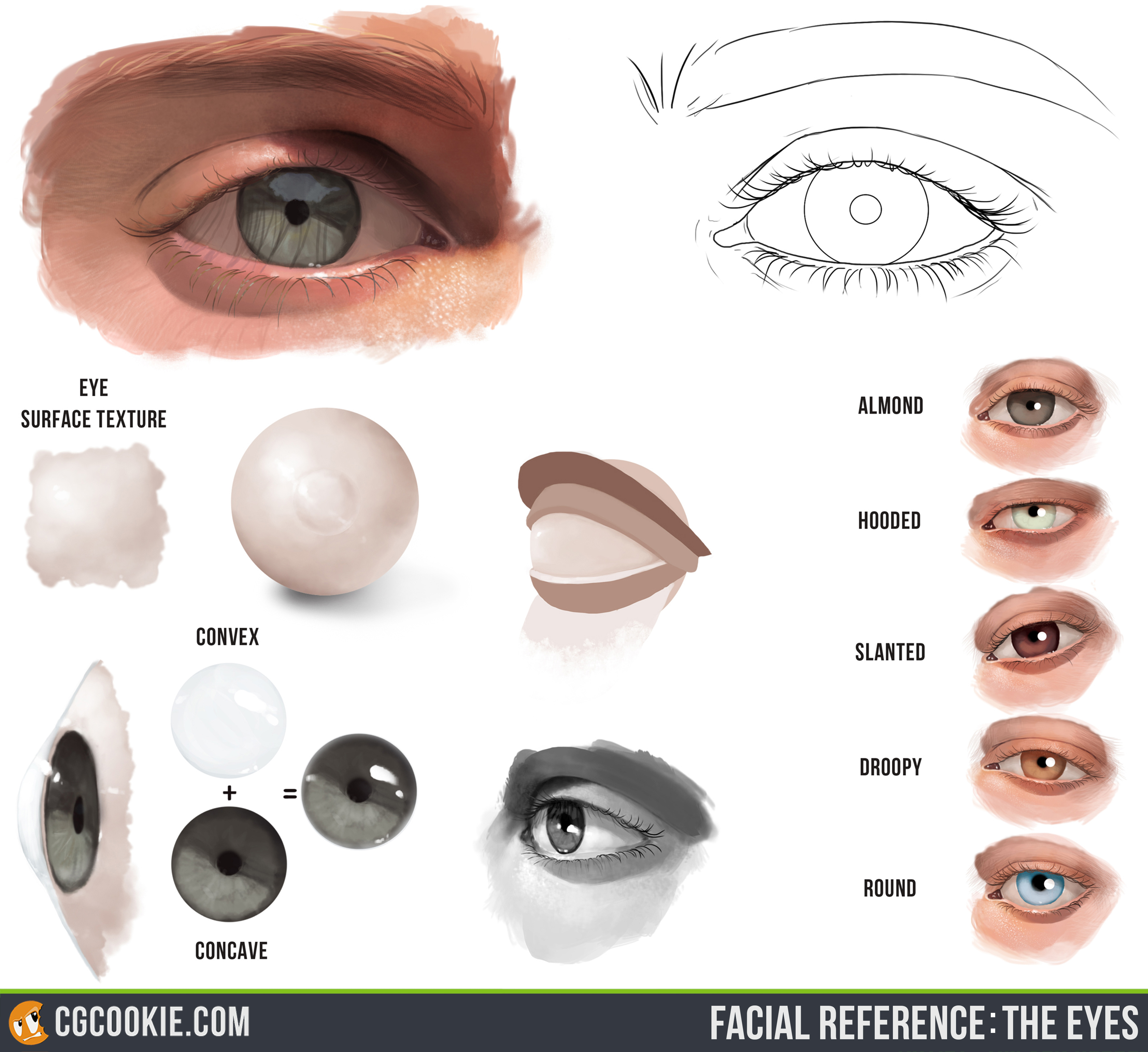 It is a picture of Lively Eye Injury Drawing References