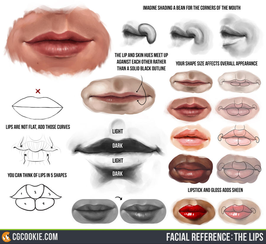 Facial Reference: The Lips