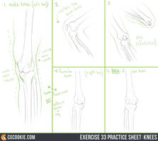 Exercise 33 Practice Sheet: Knees by CGCookie