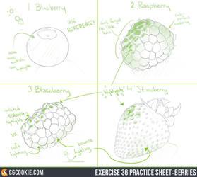 Exercise 36 Practice Sheet: Berries
