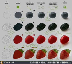 Exercise 36 Results: Berries Step by Step Chart