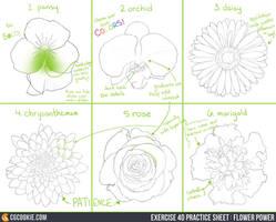 Exercise 40 Practice Sheet: Flower Power