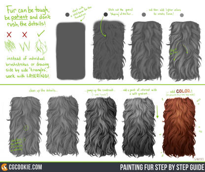 Exercise 45 Results: Fur Step by Step Guide