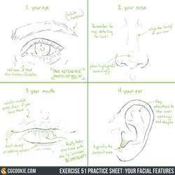 Exercise 51 Practice Sheet: Your Facial Features by CGCookie