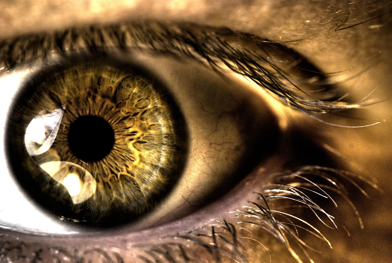 Augen by Simplex0