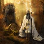 Half-Elven Druid by bobgreyvenstein