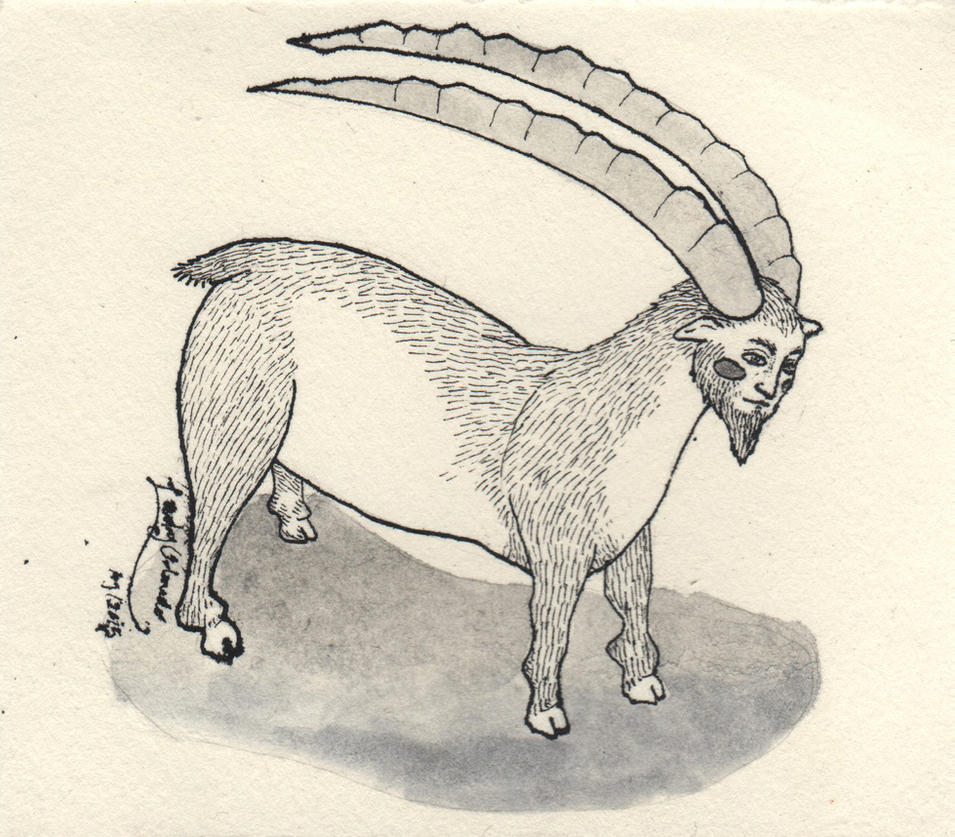 Medieval goat by LadyOrlandoArt
