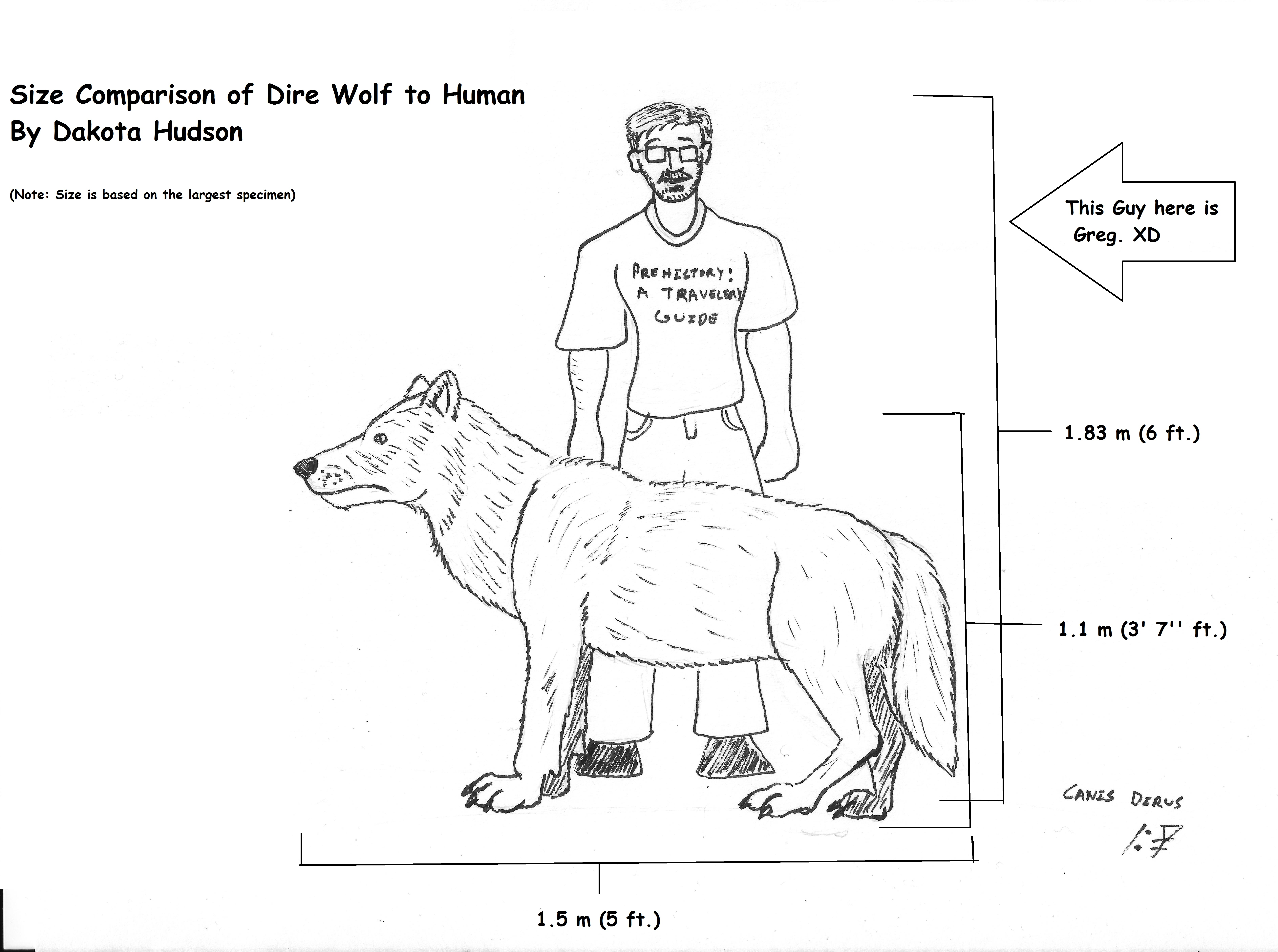 Dire Wolf to Human Size Comparison by TheNewOldDocHudson on DeviantArt
