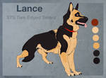 STS Lance